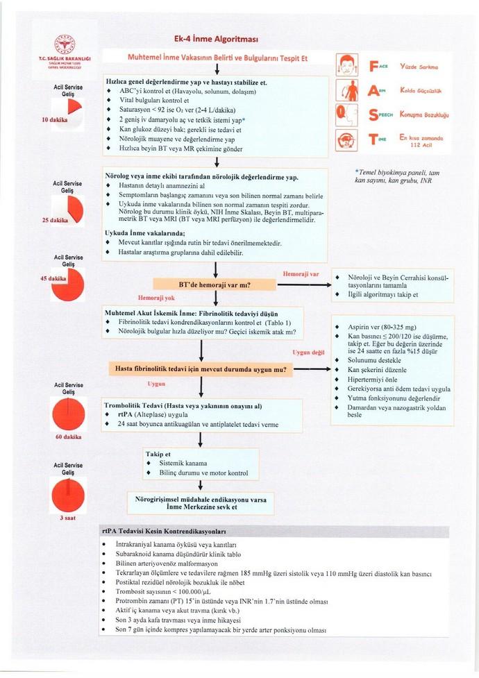 Akut İnmeli Hastalara Verilecek Sağlık Hizmetleri Hakkında Yönerge