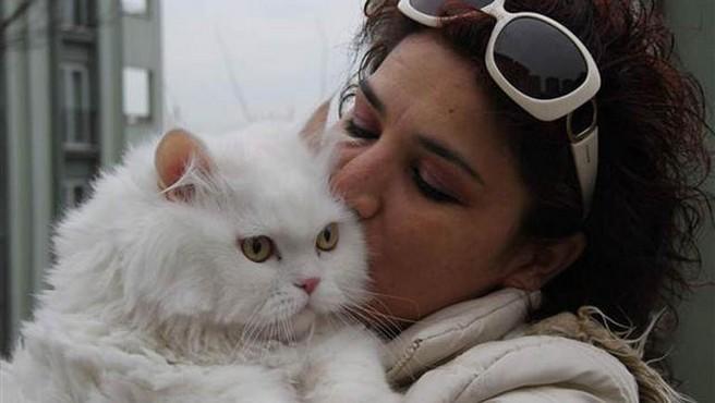 Hemşirenin Kedi Durumundan Tayini