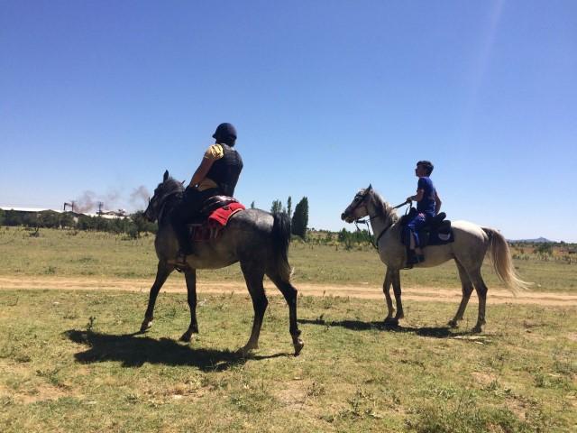 Atlı UMKE Timleri Kayıp Şahsı Aramak için Görevde
