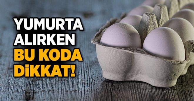 Yumurtanın üzerindeki kodlara dikkat!