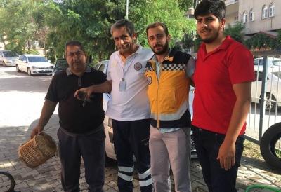 112 Personelinin Şefkatli Elleri Yaralı Güvercinin Yaralarına Derman Oldu