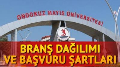 19 Mayıs Üniversitesi 224 sözleşmeli personel alacak