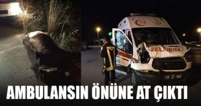 Ambulansın Önüne At Çıktı