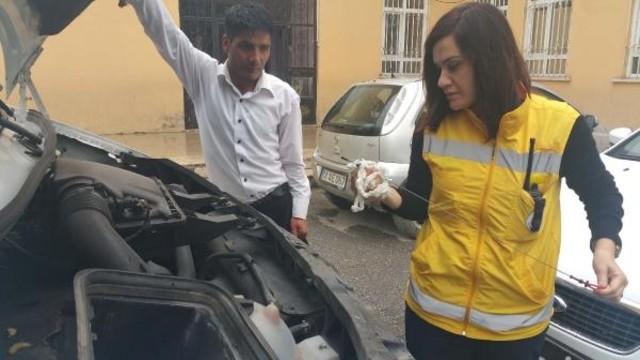 Ambulans sürücüsü Özge, can kurtarıyor
