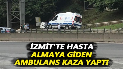 Kontrolden Çıkan Ambulans Yol Kenarındaki Levhalara Çarptı