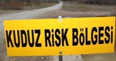 Kuduz kurban paniği: 104 kişi hastanede