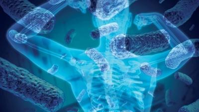 Müjde! Nur topu gibi bir organımız oldu: Mikrobiyom