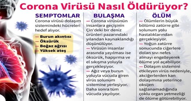 Corona Virüsü Nasıl Öldürür?