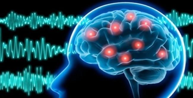 Epilepsi Nedir ?