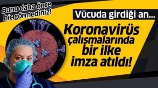 Koronavirüsün İnsan Hücresine Girdiği An İlk Kez Bu Kadar Net Görüldü