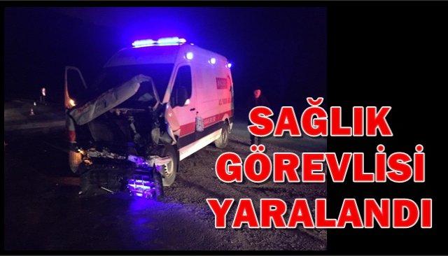 Ambulans Duvara Çarptı: 1 Yaralı
